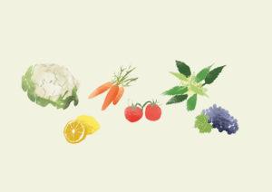 wie wirken sekundäre Pflanzenstoffe