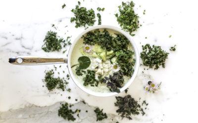 Die Neun-Kräuter-Suppe