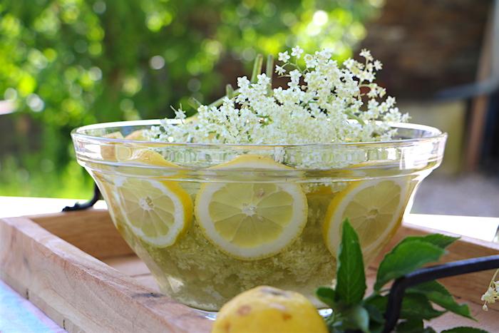 Ackerschachtelhalm Limonade